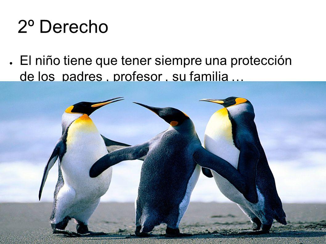 2º Derecho El niño tiene que tener siempre una protección de los padres, profesor, su familia …