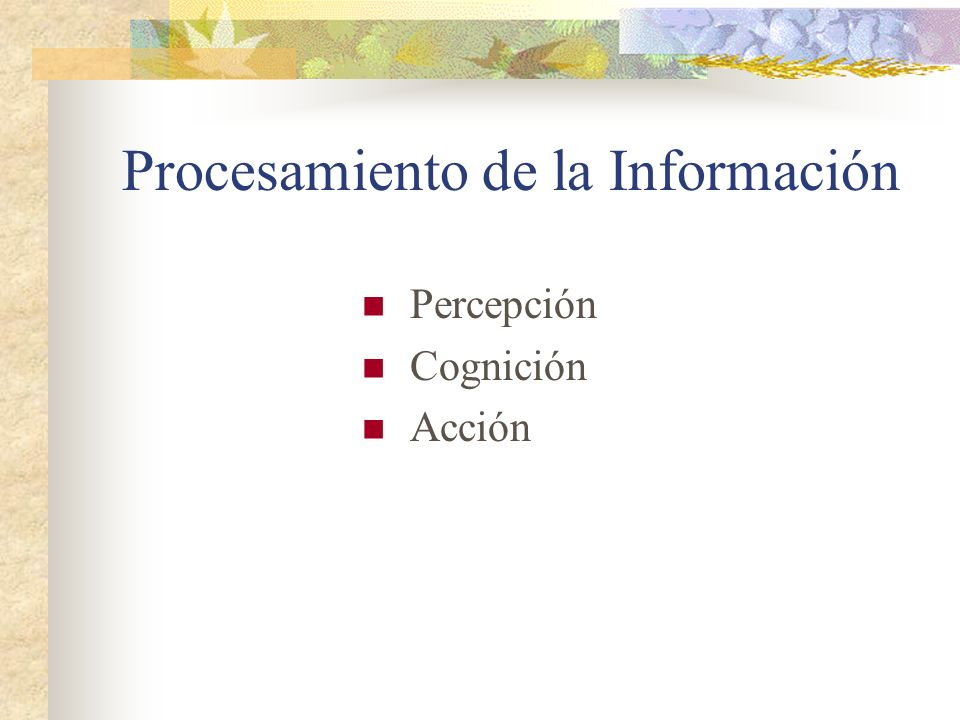 Procesamiento de la Información Percepción Cognición Acción