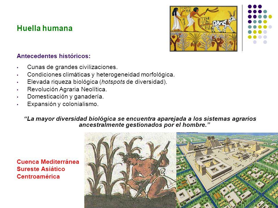 Huella humana Antecedentes históricos: Cunas de grandes civilizaciones. Condiciones climáticas y heterogeneidad morfológica. Elevada riqueza biológica