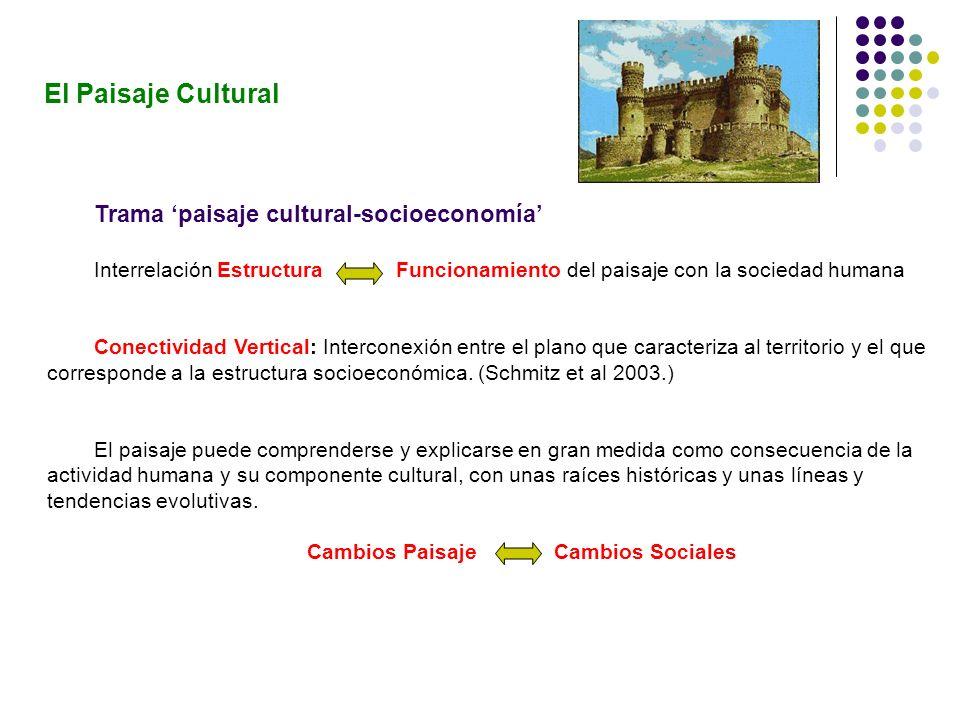 Trama paisaje cultural-socioeconomía Interrelación Estructura Funcionamiento del paisaje con la sociedad humana Conectividad Vertical: Interconexión e