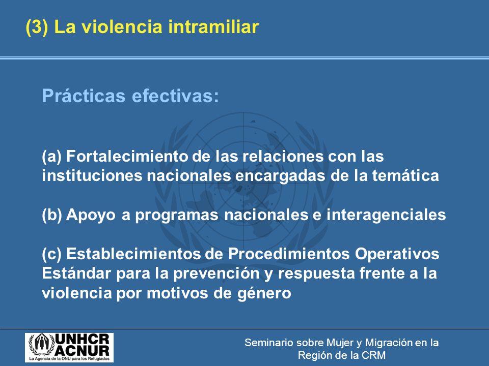 Seminario sobre Mujer y Migración en la Región de la CRM (3) La violencia intramiliar Prácticas efectivas: (a) Fortalecimiento de las relaciones con las instituciones nacionales encargadas de la temática (b) Apoyo a programas nacionales e interagenciales (c) Establecimientos de Procedimientos Operativos Estándar para la prevención y respuesta frente a la violencia por motivos de género