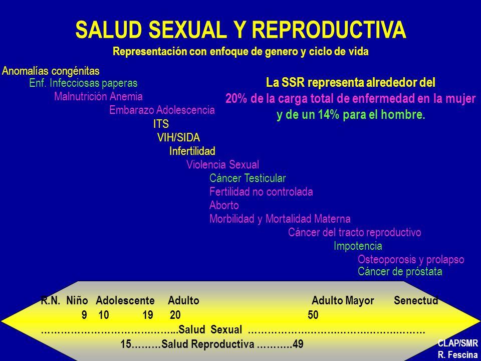 2 SALUD SEXUAL Y REPRODUCTIVA Representación con enfoque de genero y ciclo de vida Anomalías congénitas Malnutrición Anemia Embarazo Adolescencia ITS