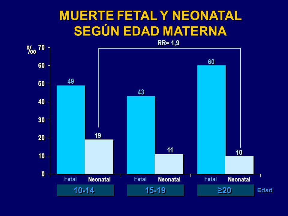 MUERTE FETAL Y NEONATAL SEGÚN EDAD MATERNA MUERTE FETAL Y NEONATAL SEGÚN EDAD MATERNA 19 43 60 49 10 11 Fetal Neonatal Fetal Neonatal Fetal Neonatal 1