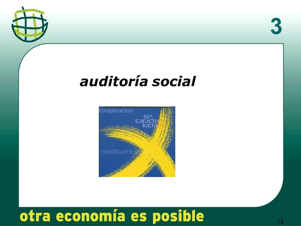 15 3 auditoría social