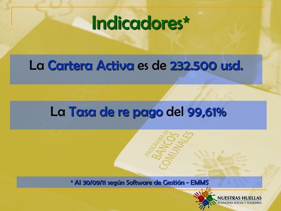 Indicadores* Cartera Activa232.500 usd.La Cartera Activa es de 232.500 usd.