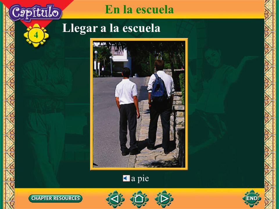 Presente de los verbos en -ar en el plural 4 When speaking to more than one person, you use the ustedes form of the verb.
