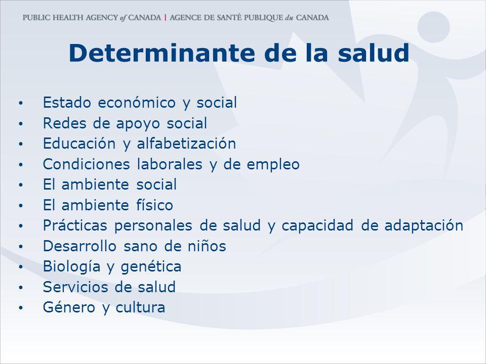 Determinante de la salud Estado económico y social Redes de apoyo social Educación y alfabetización Condiciones laborales y de empleo El ambiente soci