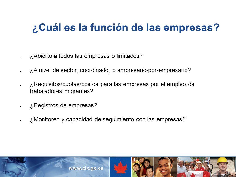 ¿Cuál es la función de las empresas? ¿Abierto a todos las empresas o limitados? ¿A nivel de sector, coordinado, o empresario-por-empresario? ¿Requisit