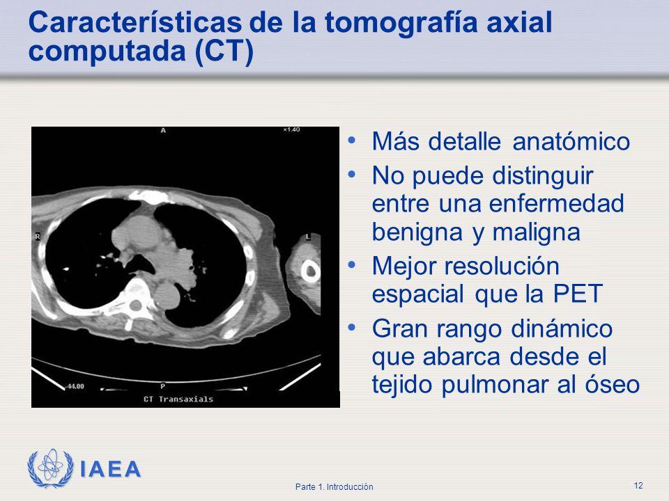 IAEA Parte 1. Introducción 12 Características de la tomografía axial computada (CT) Más detalle anatómico No puede distinguir entre una enfermedad ben