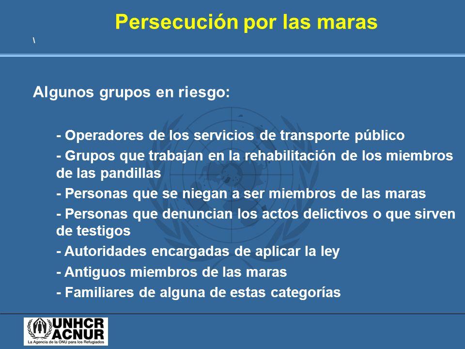 Persecución por las maras \ Algunos grupos en riesgo: - Operadores de los servicios de transporte público - Grupos que trabajan en la rehabilitación d