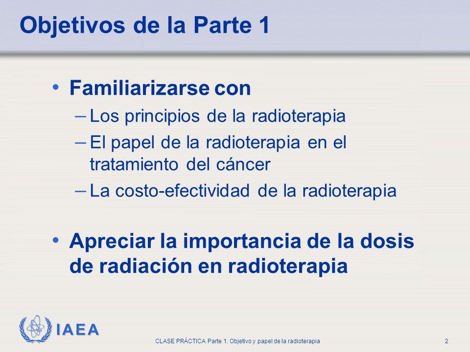 IAEA CLASE PRÁCTICA Parte 1. Objetivo y papel de la radioterapia2 Objetivos de la Parte 1 Familiarizarse con – Los principios de la radioterapia – El