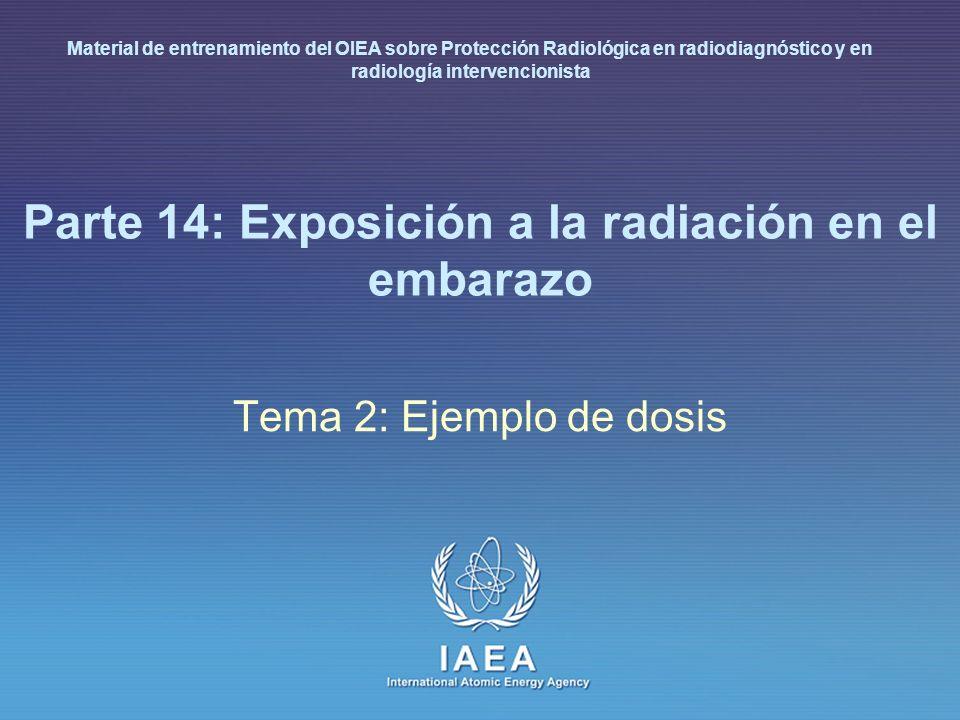 IAEA International Atomic Energy Agency Parte 14: Exposición a la radiación en el embarazo Tema 2: Ejemplo de dosis Material de entrenamiento del OIEA