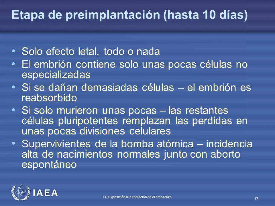 IAEA 14: Exposición a la radiación en el embarazo 17 Etapa de preimplantación (hasta 10 días) Solo efecto letal, todo o nada El embrión contiene solo
