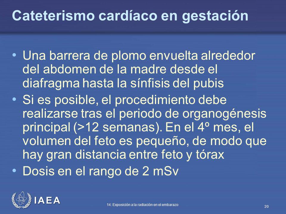 IAEA 14: Exposición a la radiación en el embarazo 20 Cateterismo cardíaco en gestación Una barrera de plomo envuelta alrededor del abdomen de la madre
