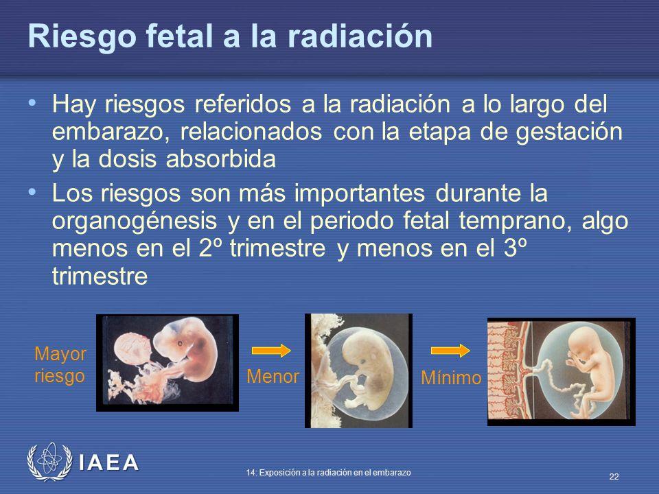 IAEA 14: Exposición a la radiación en el embarazo 22 Riesgo fetal a la radiación Hay riesgos referidos a la radiación a lo largo del embarazo, relacio