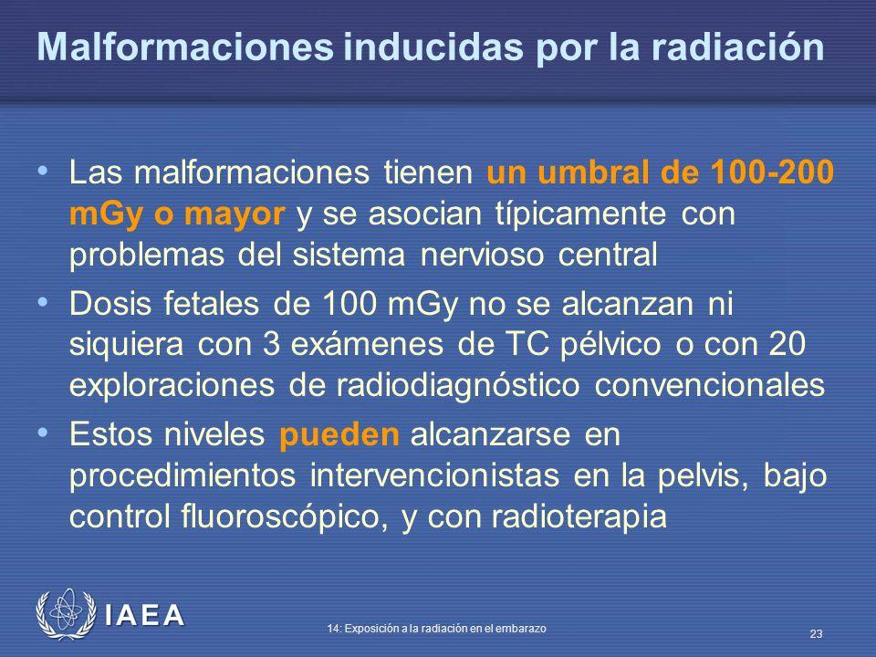 IAEA 14: Exposición a la radiación en el embarazo 23 Malformaciones inducidas por la radiación Las malformaciones tienen un umbral de 100-200 mGy o ma