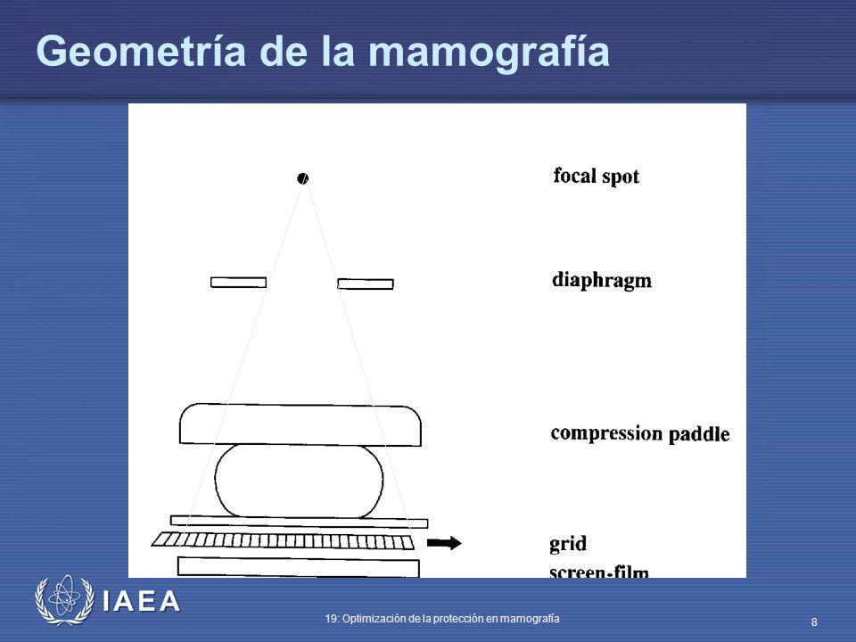 IAEA 19: Optimización de la protección en mamografía 8 Geometría de la mamografía