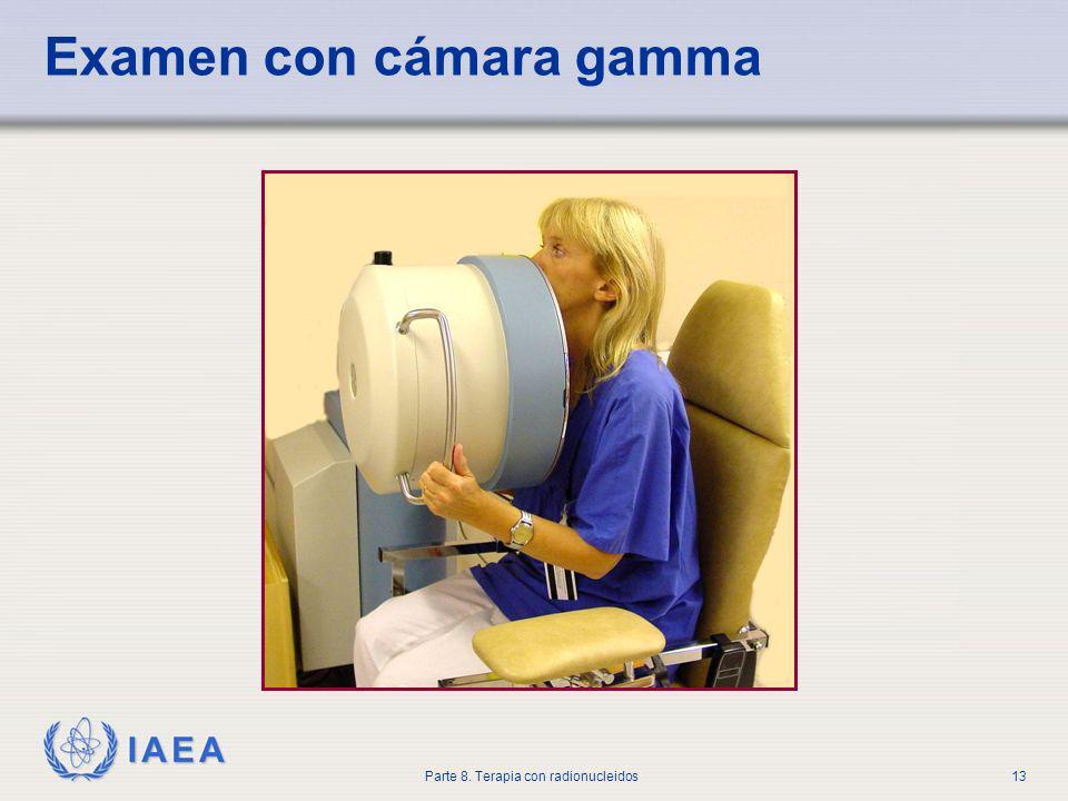 IAEA Parte 8. Terapia con radionucleidos13 Examen con cámara gamma