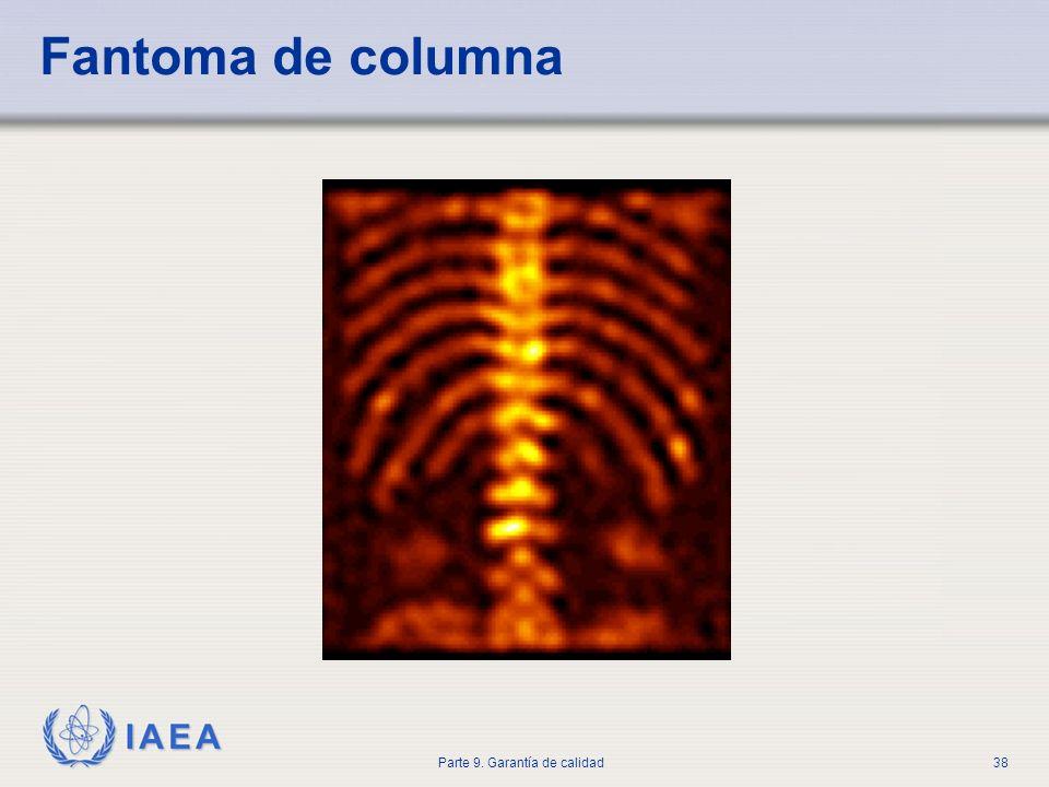 IAEA Parte 9. Garantía de calidad38 Fantoma de columna