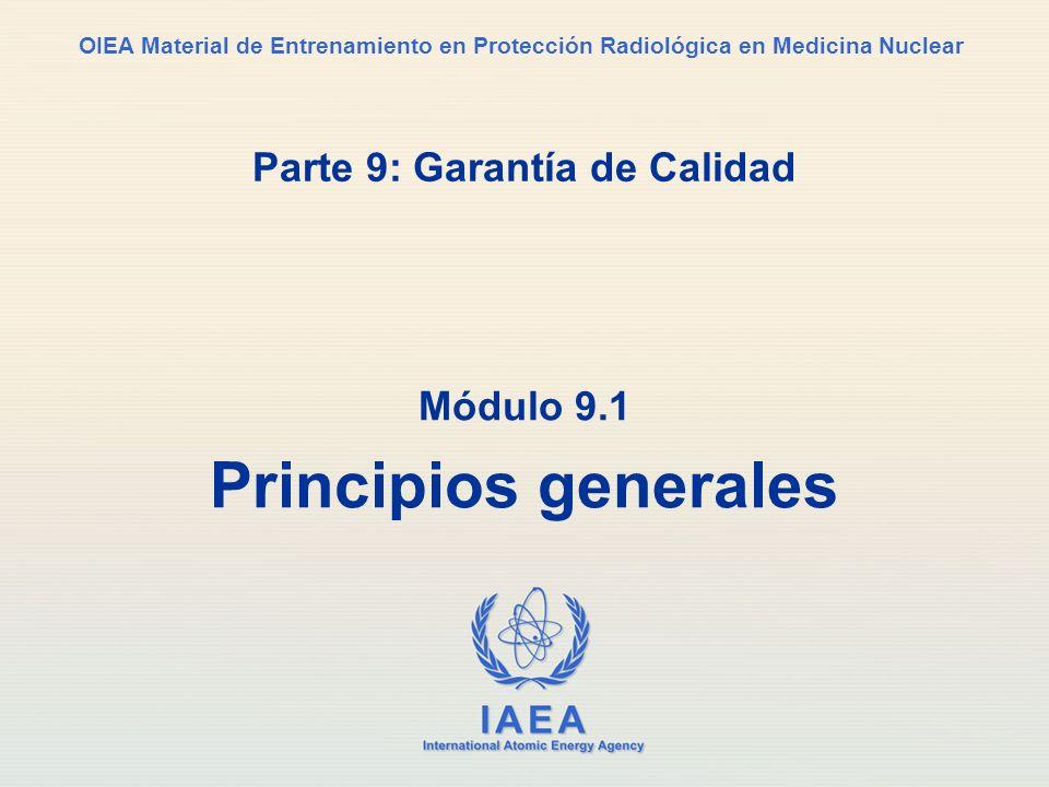 IAEA Parte 9.