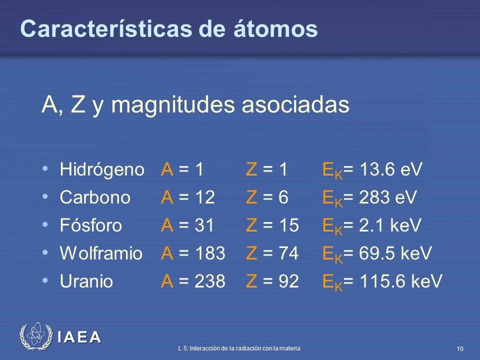 IAEA L 5: Interacción de la radiación con la materia 10 Características de átomos A, Z y magnitudes asociadas HidrógenoA = 1Z = 1E K = 13.6 eV Carbono