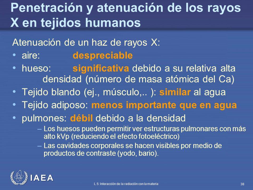 IAEA L 5: Interacción de la radiación con la materia 38 Penetración y atenuación de los rayos X en tejidos humanos Atenuación de un haz de rayos X: ai