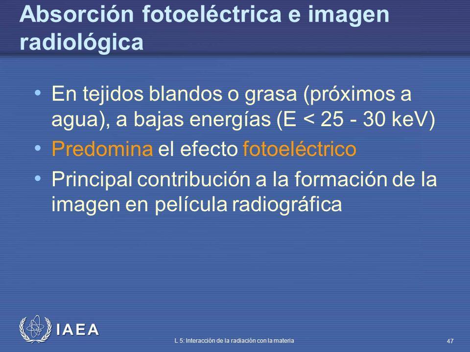 IAEA L 5: Interacción de la radiación con la materia 47 Absorción fotoeléctrica e imagen radiológica En tejidos blandos o grasa (próximos a agua), a b