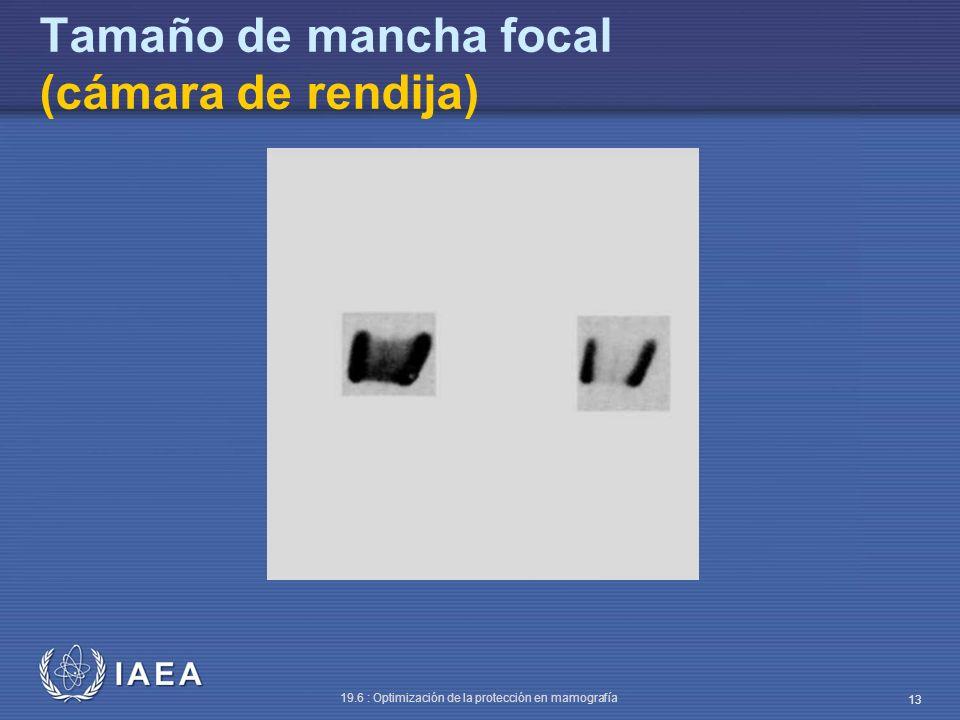IAEA 19.6 : Optimización de la protección en mamografía 13 Tamaño de mancha focal (cámara de rendija)