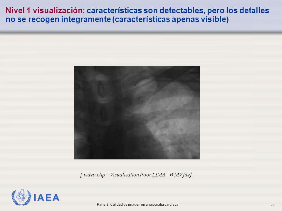 IAEA Nivel 1 visualización: características son detectables, pero los detalles no se recogen íntegramente (características apenas visible) [ video cli