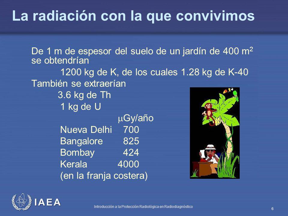 IAEA Introducción a la Protección Radiológica en Radiodiagnóstico 6 La radiación con la que convivimos De 1 m de espesor del suelo de un jardín de 400 m 2 se obtendrían 1200 kg de K, de los cuales 1.28 kg de K-40 También se extraerían 3.6 kg de Th 1 kg de U Gy/año Nueva Delhi 700 Bangalore 825 Bombay 424 Kerala4000 (en la franja costera)