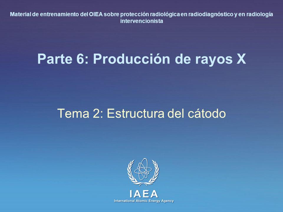IAEA L 6: Producción de rayos X11 Estructura del cátodo (I) El cátodo incluye los filamentos y circuitería asociada – wolframio: material preferido por su alto punto de fusión (3370°C) – baja evaporación del filamento – no se arquea – depósito mínimo de W sobre la cubierta de vidrio Para reducir la evaporación, la temperatura de emisión del cátodo solo se alcanza antes de la exposición.
