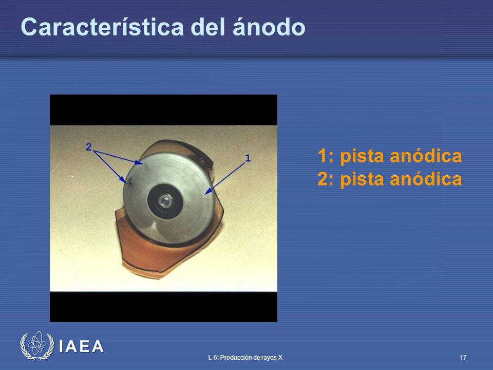 IAEA L 6: Producción de rayos X18 A MENOR ÁNGULO, MEJOR RESOLUCIÓN Ángulo anódico (II) Ángulo Ancho haz incidente de electrones Tamaño aparente mancha focal tamaño real mancha focal película Ángulo Ancho haz incidente de electrones tamaño aparente de mancha focal aumentado tamaño real mancha focal película