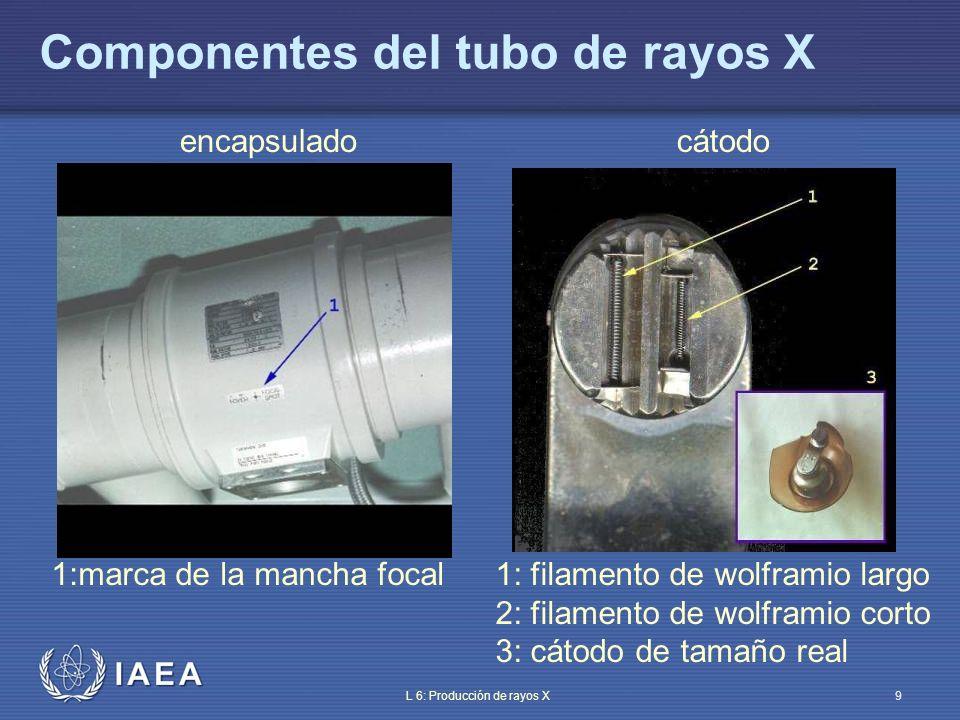 IAEA International Atomic Energy Agency Parte 6: Producción de rayos X Tema 2: Estructura del cátodo Material de entrenamiento del OIEA sobre protección radiológica en radiodiagnóstico y en radiología intervencionista