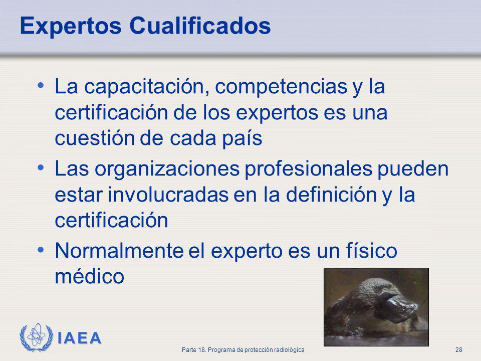 IAEA Parte 18. Programa de protección radiológica28 Expertos Cualificados La capacitación, competencias y la certificación de los expertos es una cues