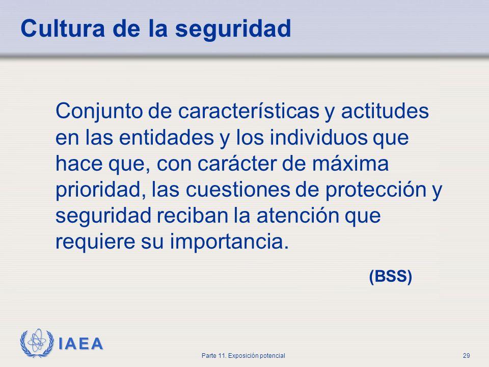 IAEA Parte 11. Exposición potencial28 Lecciones aprendidas de la exposición accidental Una cultura de la seguridad debería incluir recopilación de inf