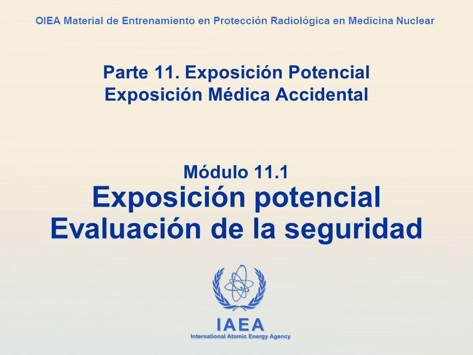 IAEA Parte 11. Exposición potencial3 Contenido Exposición potencial, evaluación de la seguridad Prevención de accidentes, lecciones aprendidas