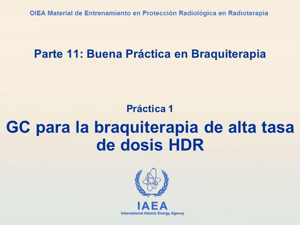 IAEA International Atomic Energy Agency OIEA Material de Entrenamiento en Protección Radiológica en Radioterapia Parte 11: Buena Práctica en Braquiter