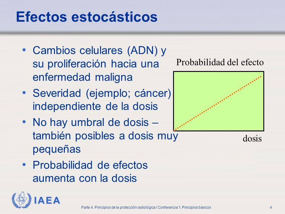 IAEA Parte 4. Principios de la protección radiológica / Conferencia 1. Principios básicos4 Efectos estocásticos Cambios celulares (ADN) y su prolifera