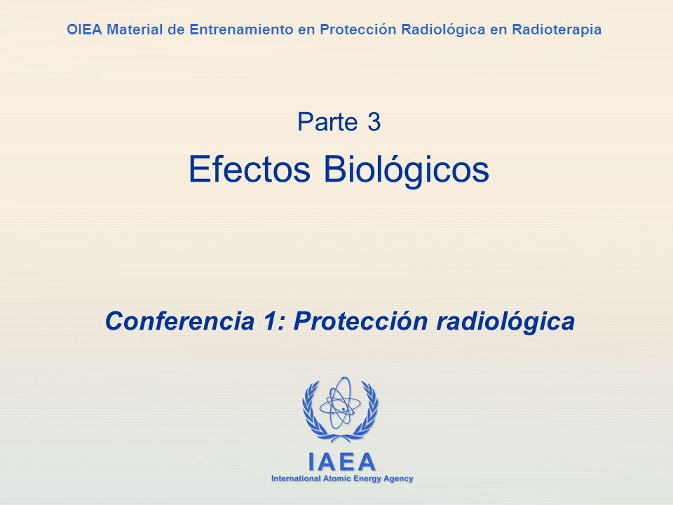 IAEA International Atomic Energy Agency OIEA Material de Entrenamiento en Protección Radiológica en Radioterapia Parte 3 Efectos Biológicos Conferenci