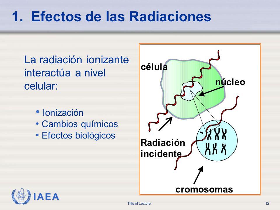 IAEA Title of Lecture12 1. Efectos de las Radiaciones La radiación ionizante interactúa a nivel celular: Ionización Cambios químicos Efectos biológico