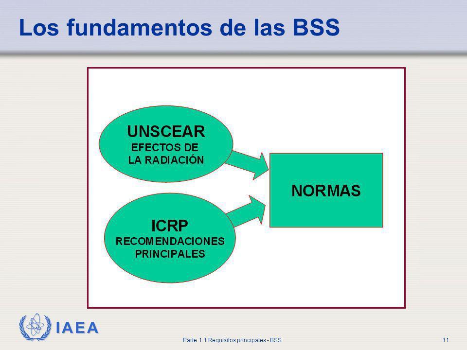 IAEA Parte 1.1 Requisitos principales - BSS11 Los fundamentos de las BSS
