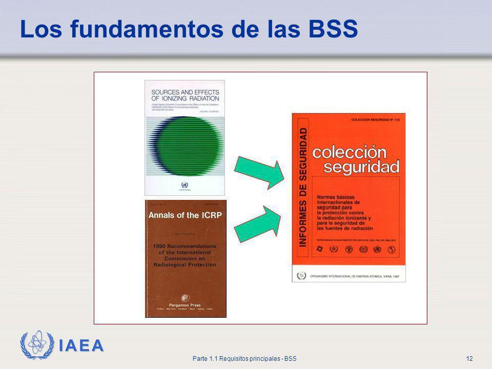 IAEA Parte 1.1 Requisitos principales - BSS12 Los fundamentos de las BSS