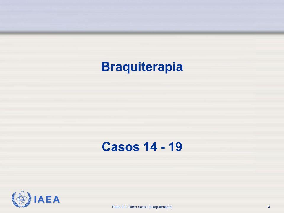 IAEA Parte3.2 Otros casos (braquiterapia)5 Problemas con el equipo y la fuente Caso 14