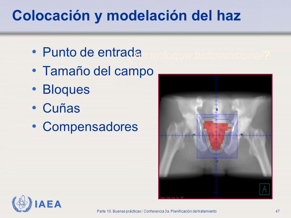 IAEA Parte 10. Buenas prácticas / Conferencia 3a. Planificación del tratamiento47 Colocación y modelación del haz Punto de entrada Tamaño del campo Bl