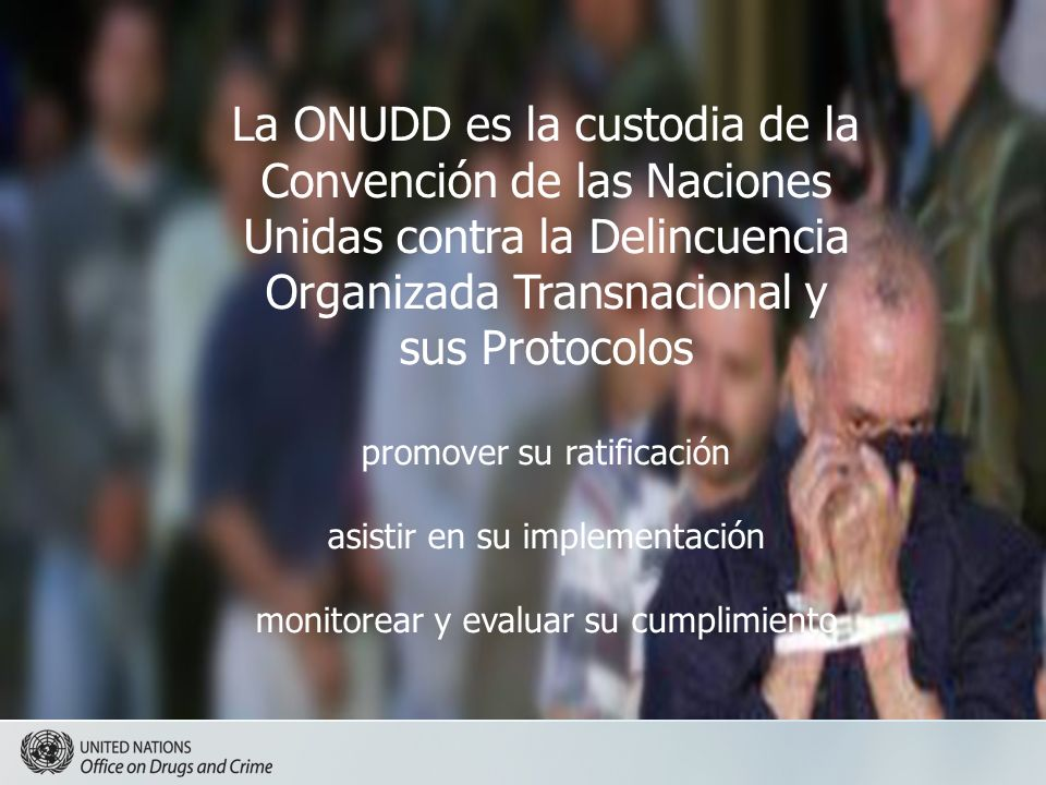 La ONUDD es la custodia de la Convención de las Naciones Unidas contra la Delincuencia Organizada Transnacional y sus Protocolos promover su ratificación asistir en su implementación monitorear y evaluar su cumplimiento