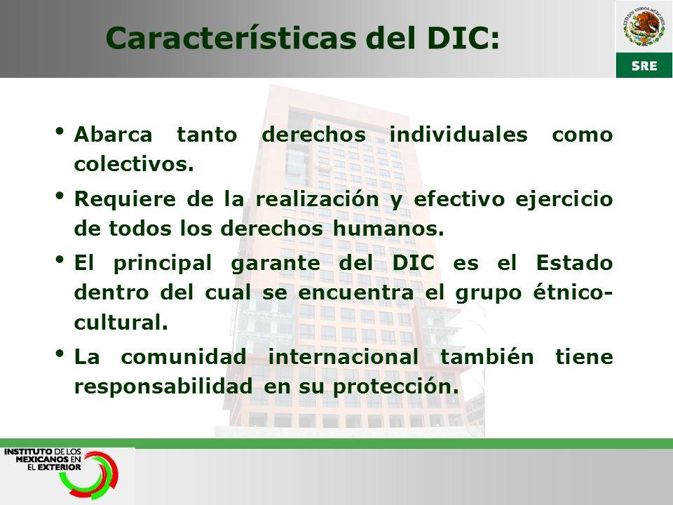 Características del DIC: Abarca tanto derechos individuales como colectivos. Requiere de la realización y efectivo ejercicio de todos los derechos hum