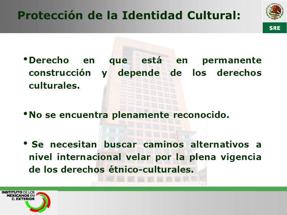 Protección de la Identidad Cultural: Derecho en que está en permanente construcción y depende de los derechos culturales. No se encuentra plenamente r