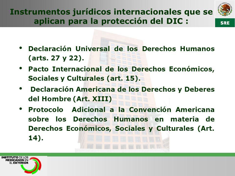 Instrumentos jurídicos internacionales que se aplican para la protección del DIC : Declaración Universal de los Derechos Humanos (arts. 27 y 22). Pact