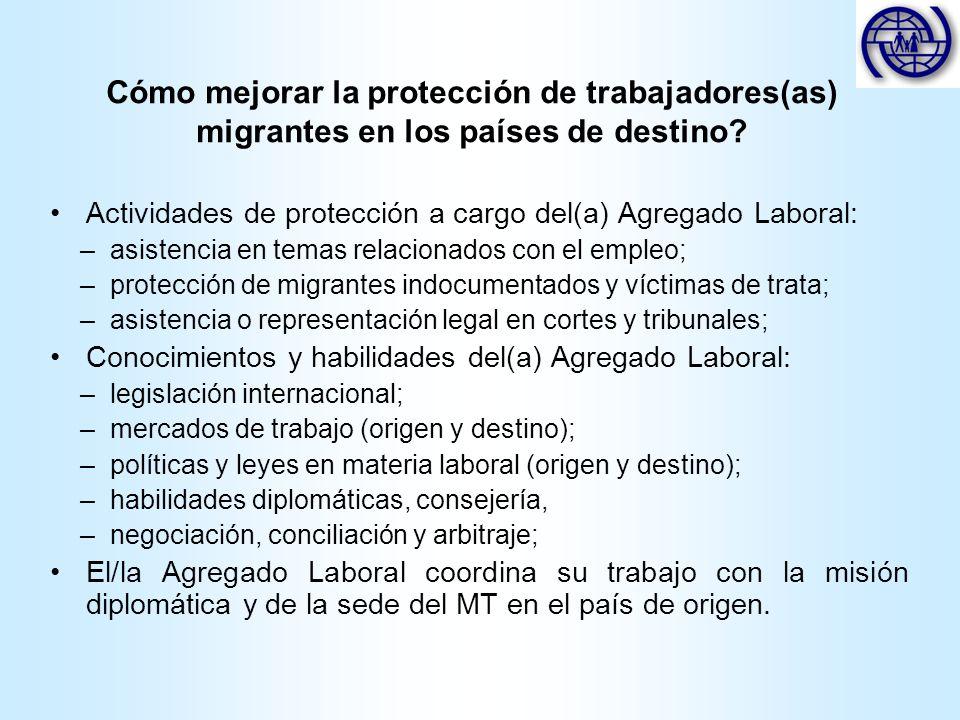 Actividades de protección a cargo del(a) Agregado Laboral: –asistencia en temas relacionados con el empleo; –protección de migrantes indocumentados y