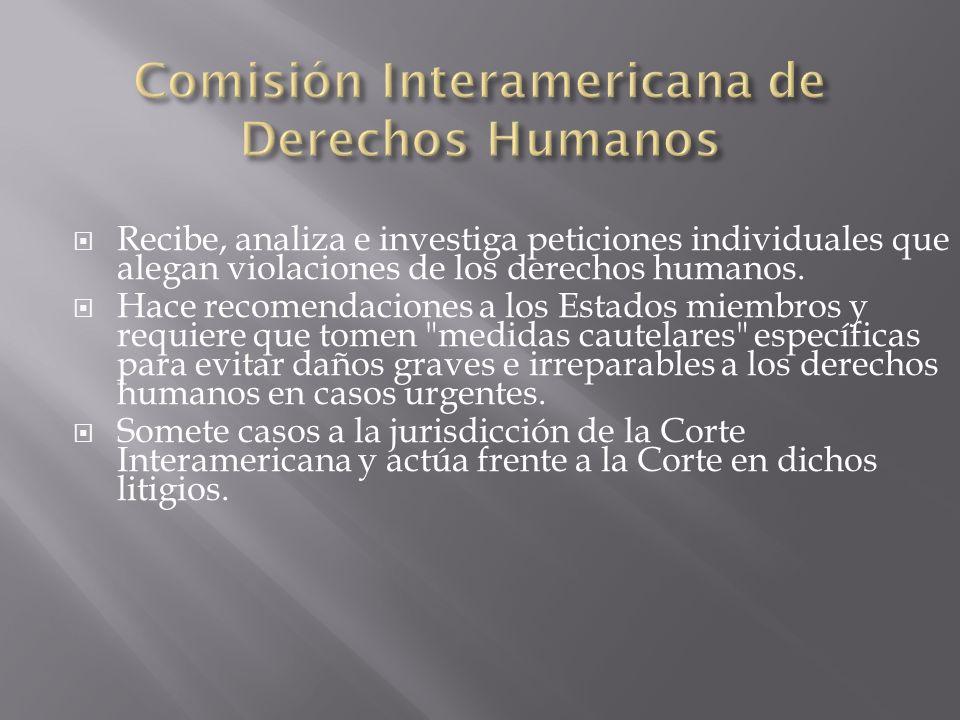Recibe, analiza e investiga peticiones individuales que alegan violaciones de los derechos humanos. Hace recomendaciones a los Estados miembros y requ